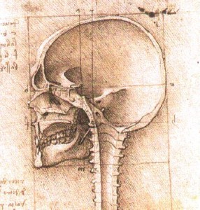 View_of_a_Skull_c1489